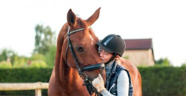 health problems in horses